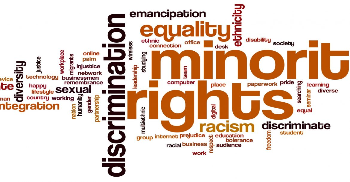 Human and Minority Rights: Spaces of Politicization in International Agendas